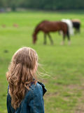 Girl watching horses in field Royalty Free Stock Photos