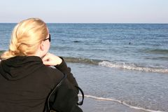 Girl watching seals at the coast of Helgoland Royalty Free Stock Photos