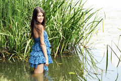 The girl in water. The girl in a dark blue dress stand knee-deep in water on lake Stock Image