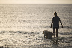 Girl in the water of a beach with her dog Stock Photography