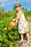 Girl watering Royalty Free Stock Photos