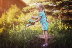 Girl with a watering can stock photos