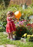 Girl watering flower beds Stock Images