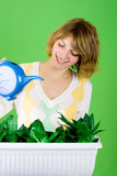 Girl watering flowers Royalty Free Stock Photos