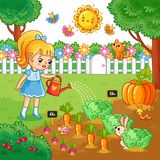 Girl is watering garden bed with vegetables. Vector illustration with farming crops in cartoon style. Agricultural work Royalty Free Stock Photo