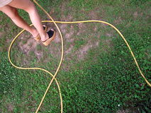 Girl watering grass. A view of a girls legs with a hose wrapped around them as she waters the grass royalty free stock photo