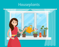 Girl watering house plants on window. Stock Photos