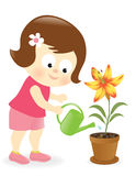 Girl watering lily flower Stock Photos