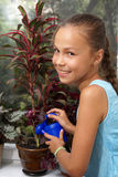 Girl watering plant Royalty Free Stock Photos