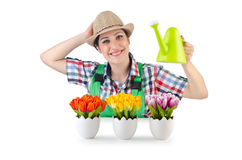 Girl watering plants Stock Photo