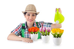 Girl watering plants Stock Image