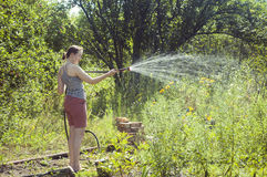 Girl watering the plants Stock Photo