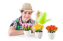 Girl watering plants Stock Images