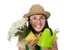 Girl watering plants on white Stock Photos