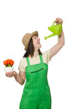 Girl watering plants on white Royalty Free Stock Photos