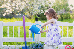 Girl watering spring flowers Stock Photography