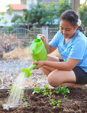 Girl watering vegetable plant in home garden field family relaxi Stock Photos