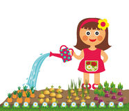 Girl waters vegetables. In garden Royalty Free Stock Photography
