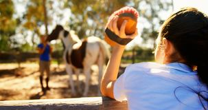 Girl waving hand to her mother in ranch 4k. Girl waving hand to her mother in ranch on a sunny day 4k stock video