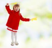 Girl waving maple leaves Royalty Free Stock Image