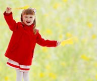 Girl waving maple leaves Royalty Free Stock Images