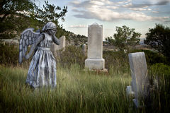 Girl wearing an angel costume in an old grave yard Royalty Free Stock Images
