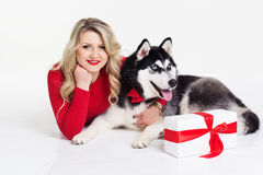 Girl wearing dress with gifts and her husky dog Stock Photos