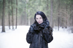 Girl wearing a fur coat in winter forest. Brunette girl wearing a fur coat in winter forest Stock Photography