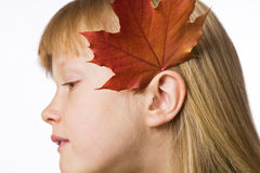 Girl wearing a maple leaf behind her ear Royalty Free Stock Photography