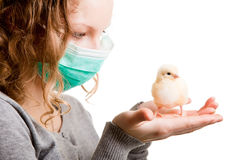 Girl wearing mas with chicken Royalty Free Stock Image
