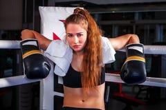 Girl wearing sport gloves sitting in corner of boxing ring. Stock Photos