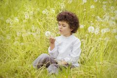 Girl Wearing White Long Sleeve Top Holding White Dandelion Flower during Daytime Royalty Free Stock Images
