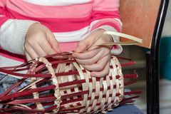 The girl weaves a willow ribbon. Children`s hands make wicker crafts. Making a basket in the workshop royalty free stock photos