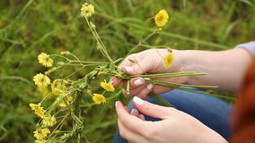 Girl weaves a wreath of wildflowers. Girl weaves a wreath of wild flowers closeup. Women's hands stock video