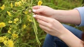 Girl weaves a wreath of wildflowers. Girl weaves a wreath of wild flowers closeup. Women's hands. Yellow flowers stock video footage