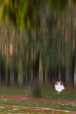 Girl in a wedding dress and forest Royalty Free Stock Image
