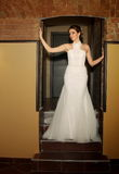 Girl in a wedding dress Stock Images