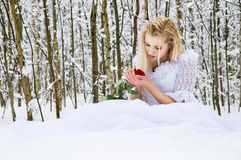 Girl in a wedding dress in winter Royalty Free Stock Images