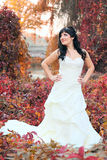 Girl in a weeding dress in a park Stock Photos