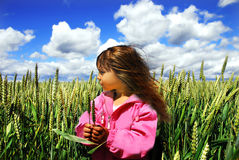 Girl in the wheat. A little cute girl in the wheat Royalty Free Stock Images