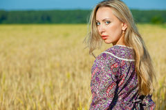 Girl in the wheat field Stock Photography