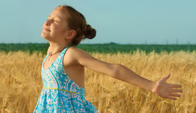 Girl on a wheat field Stock Photography