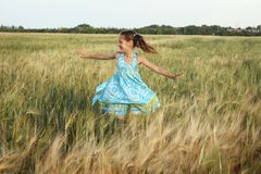 Girl on a wheat field Stock Photos