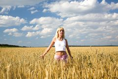 Girl in the wheat field Royalty Free Stock Photos