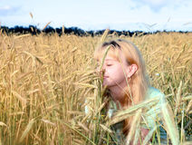 Girl in wheat field. Pretty young girl sitting in golden field, smelling wheat Royalty Free Stock Images