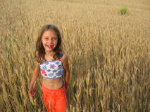 Girl in wheat field. Young girl in wheat field Royalty Free Stock Photography