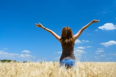 Girl on a wheat field Royalty Free Stock Photo