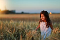 Girl in a wheat field Stock Image