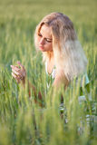 Girl in wheat field. Beautiful young girl in a field of young green wheat in the dawn Royalty Free Stock Images