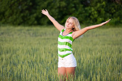 Girl in wheat field. Beautiful young girl in a field of young green wheat in the dawn Stock Photos
